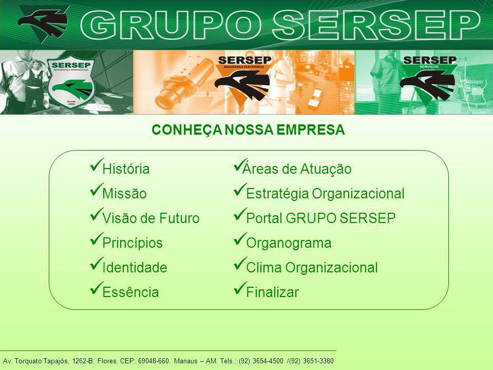 Estratégia Organizacional Portal GRUPO SERSEP Organograma
