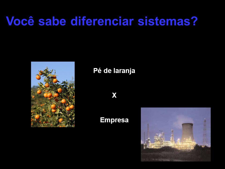 Você sabe diferenciar sistemas