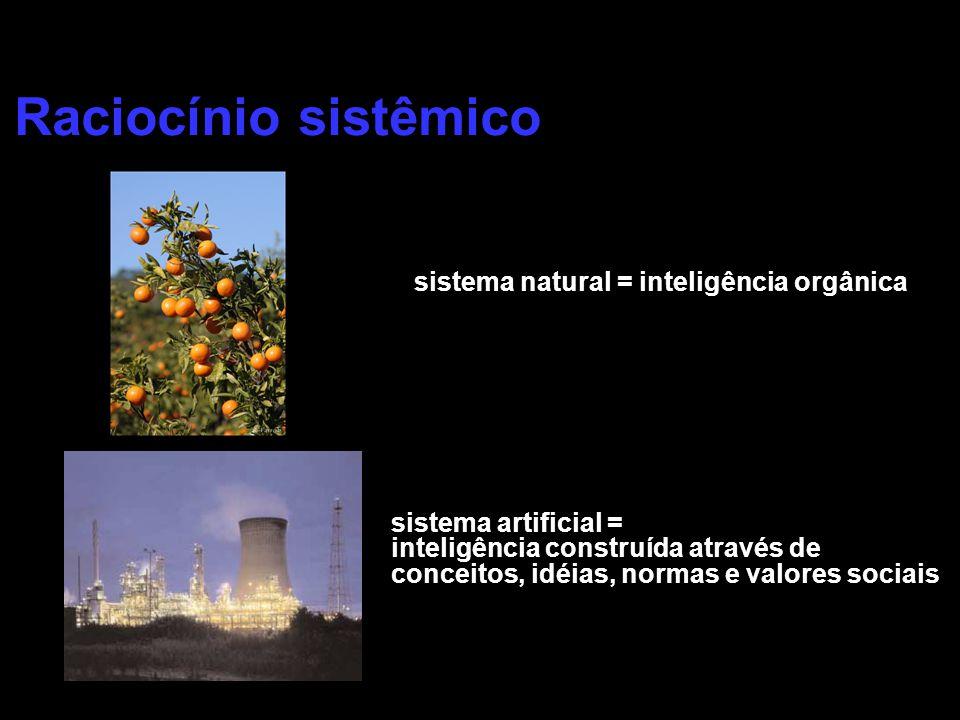 Raciocínio sistêmico sistema natural = inteligência orgânica