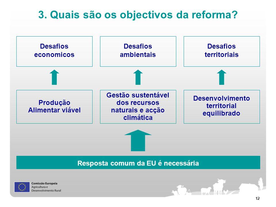 3. Quais são os objectivos da reforma