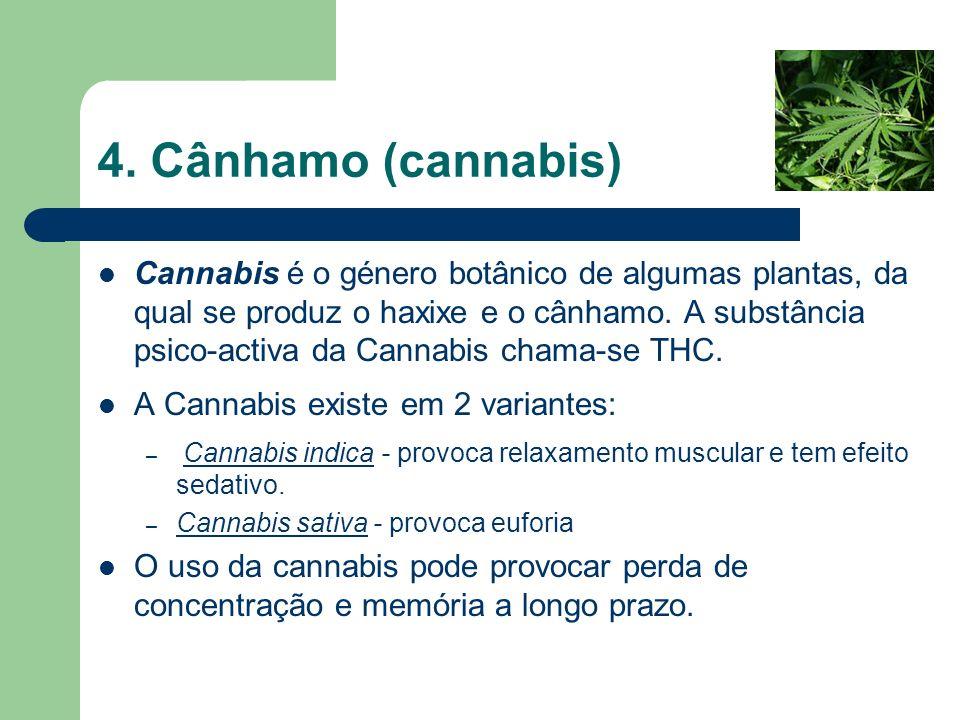 4. Cânhamo (cannabis)