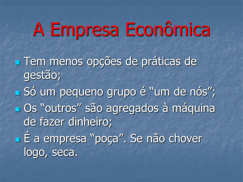 A Empresa Econômica Tem menos opções de práticas de gestão;