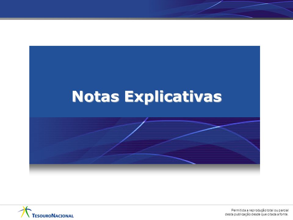 Notas Explicativas