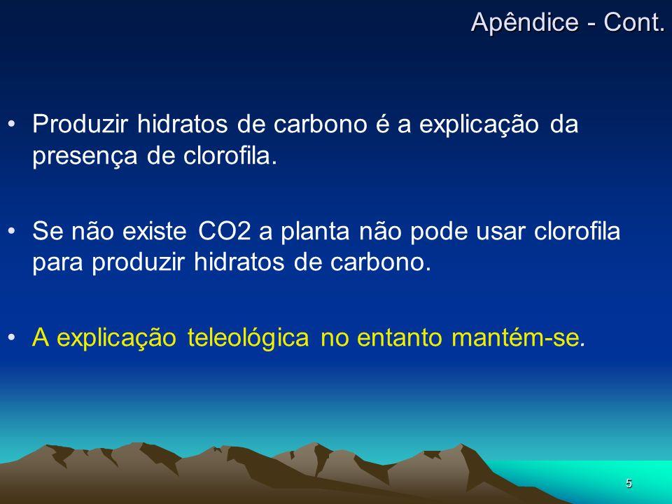 Apêndice - Cont. Produzir hidratos de carbono é a explicação da presença de clorofila.