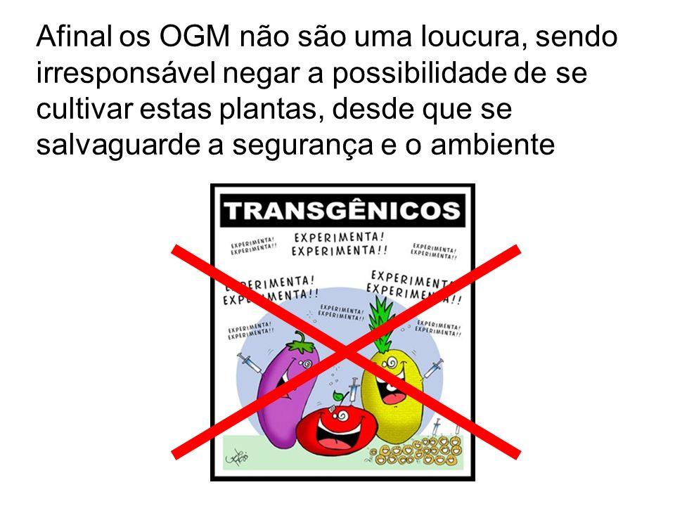 Afinal os OGM não são uma loucura, sendo irresponsável negar a possibilidade de se cultivar estas plantas, desde que se salvaguarde a segurança e o ambiente