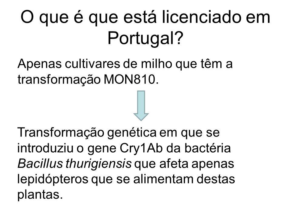 O que é que está licenciado em Portugal
