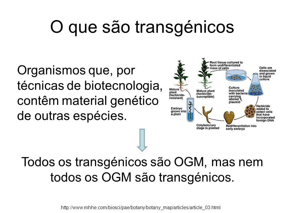 Todos os transgénicos são OGM, mas nem todos os OGM são transgénicos.
