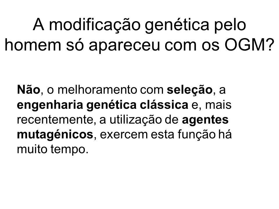 A modificação genética pelo homem só apareceu com os OGM
