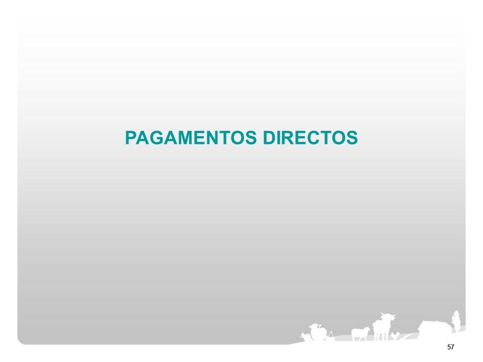 PAGAMENTOS DIRECTOS 57 57 57