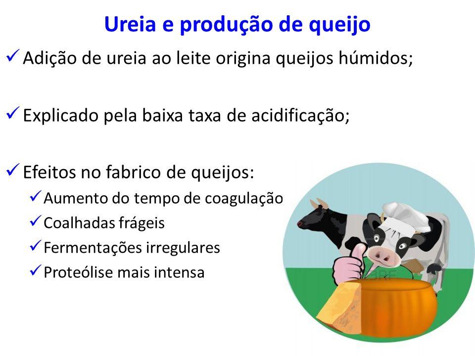 Ureia e produção de queijo