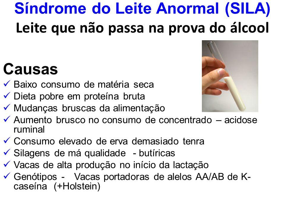 Síndrome do Leite Anormal (SILA) Leite que não passa na prova do álcool