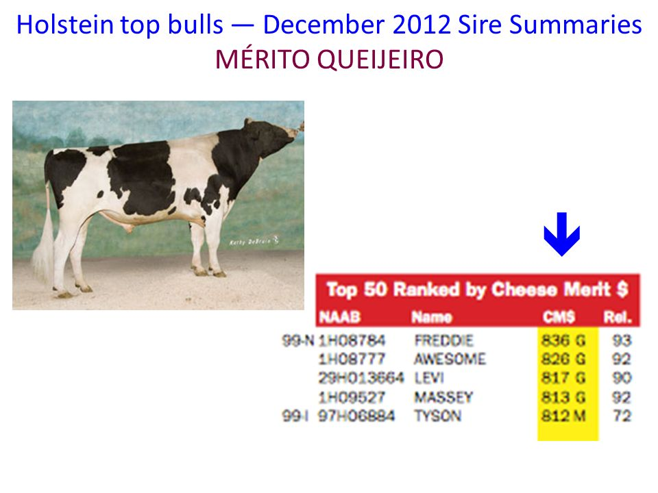 Holstein top bulls — December 2012 Sire Summaries MÉRITO QUEIJEIRO