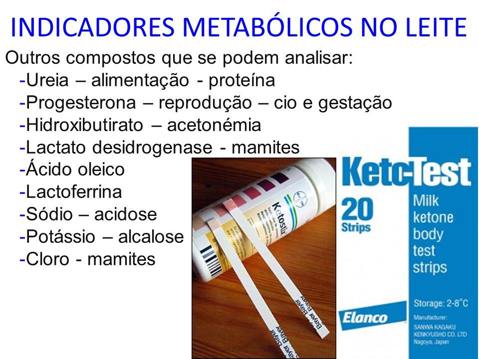 INDICADORES METABÓLICOS NO LEITE