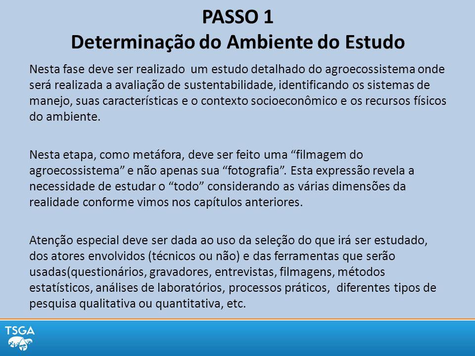 PASSO 1 Determinação do Ambiente do Estudo