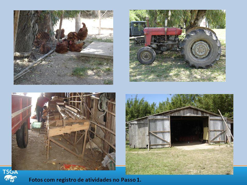 Fotos com registro de atividades no Passo 1.