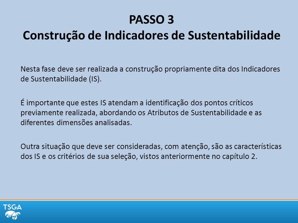 PASSO 3 Construção de Indicadores de Sustentabilidade