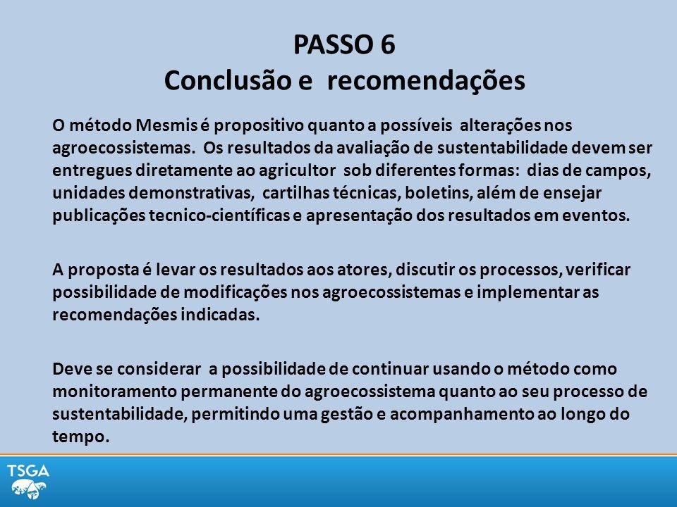 PASSO 6 Conclusão e recomendações