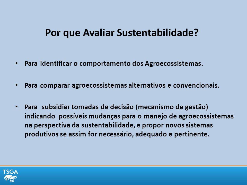 Por que Avaliar Sustentabilidade