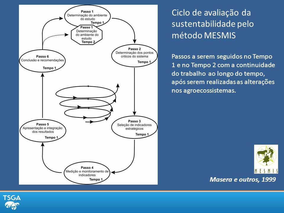 Ciclo de avaliação da sustentabilidade pelo método MESMIS