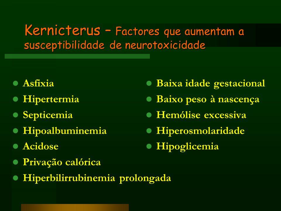 Kernicterus – Factores que aumentam a susceptibilidade de neurotoxicidade