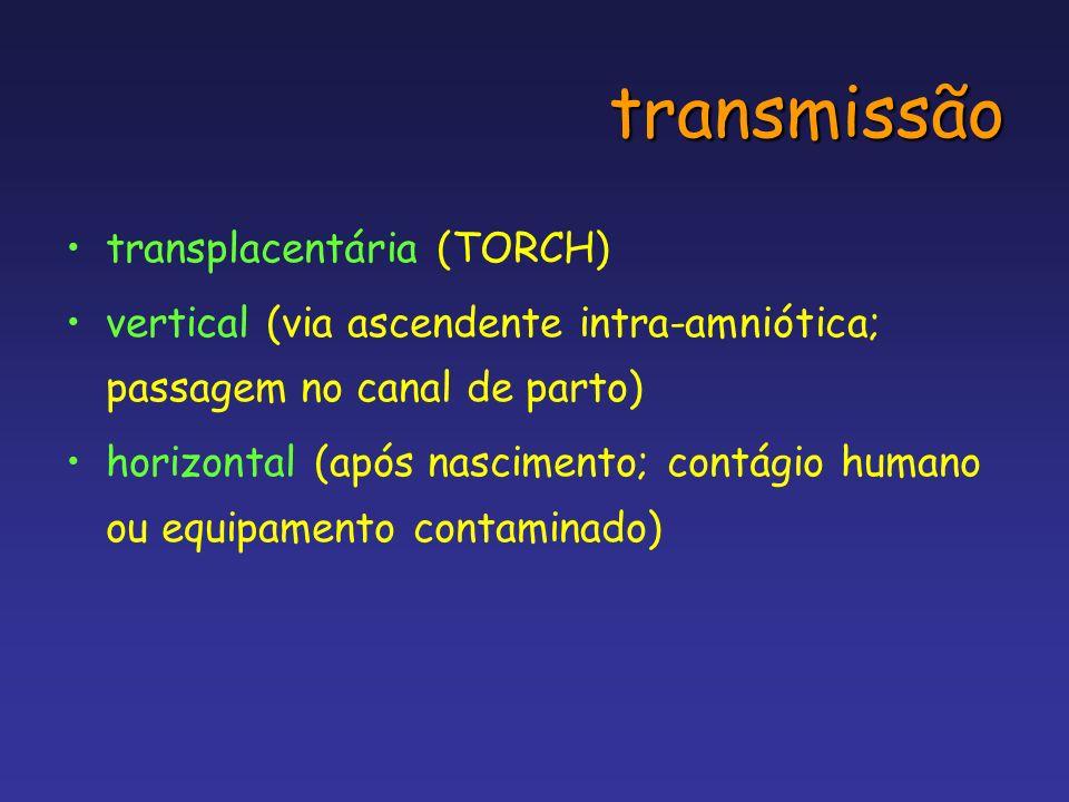 transmissão transplacentária (TORCH)