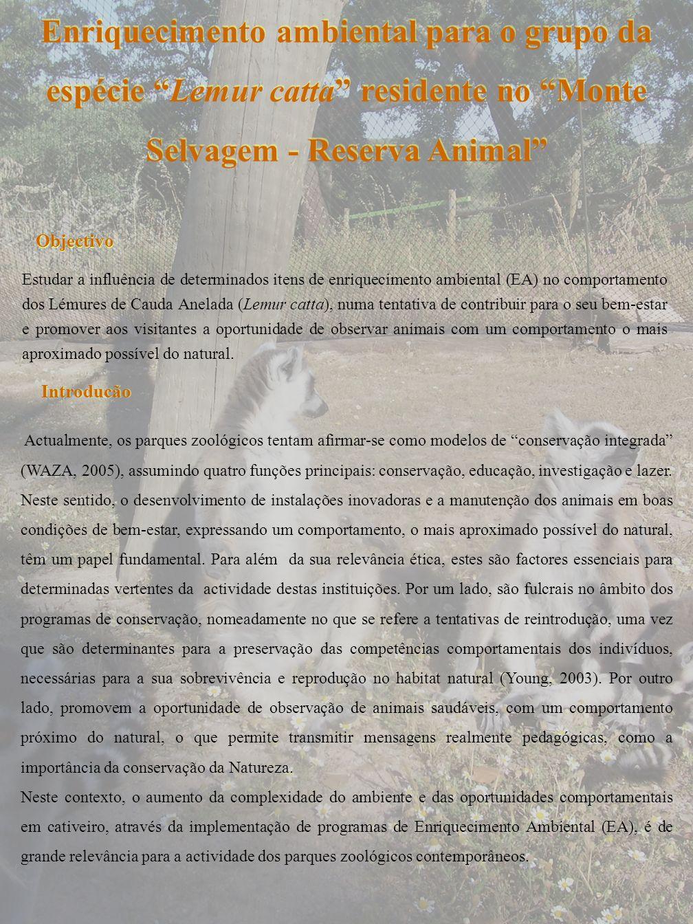 Enriquecimento ambiental para o grupo da espécie Lemur catta residente no Monte Selvagem - Reserva Animal