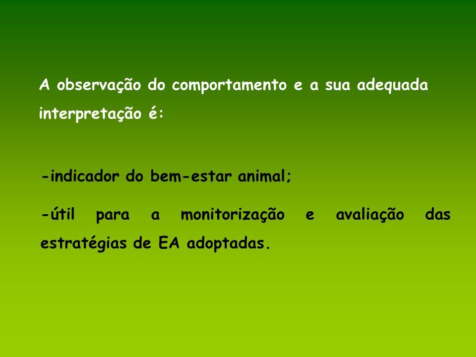 A observação do comportamento e a sua adequada interpretação é: