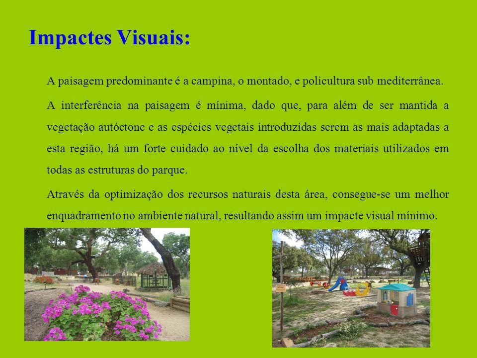 Impactes Visuais: A paisagem predominante é a campina, o montado, e policultura sub mediterrânea.