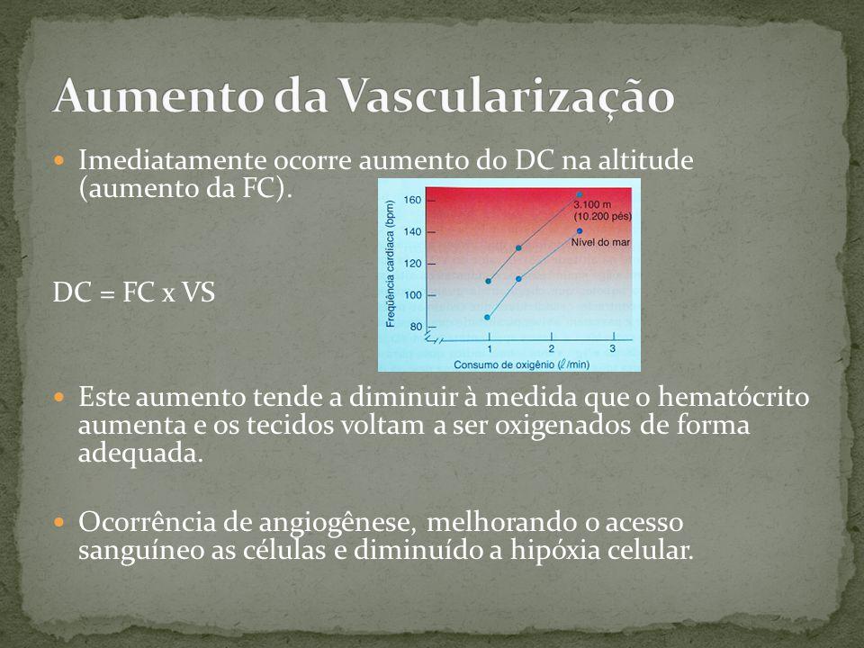 Aumento da Vascularização