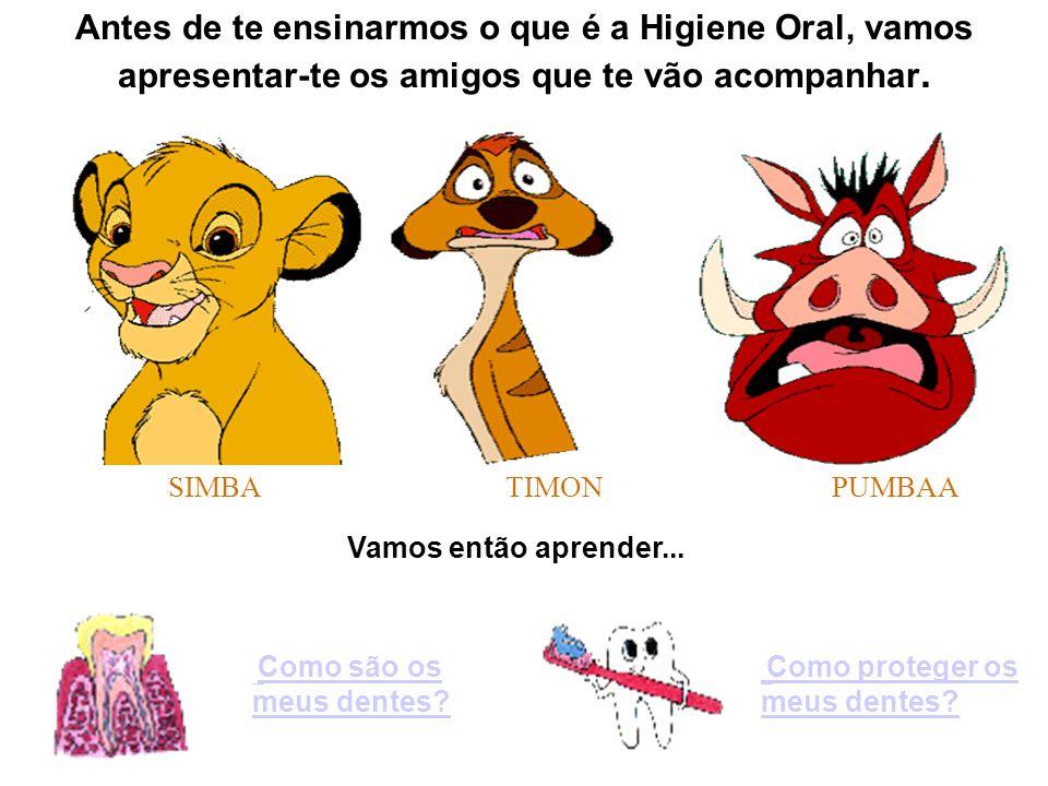 Antes de te ensinarmos o que é a Higiene Oral, vamos apresentar-te os amigos que te vão acompanhar.