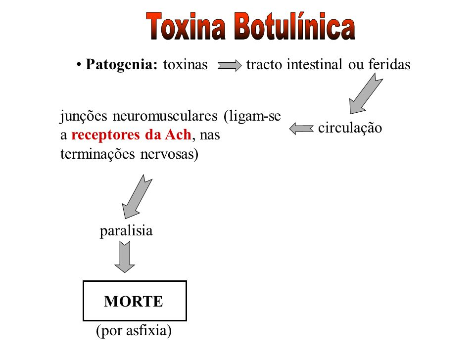 Toxina Botulínica Patogenia: toxinas tracto intestinal ou feridas