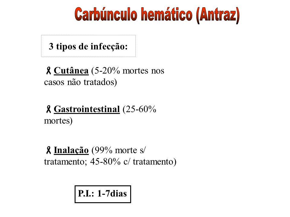 Carbúnculo hemático (Antraz)