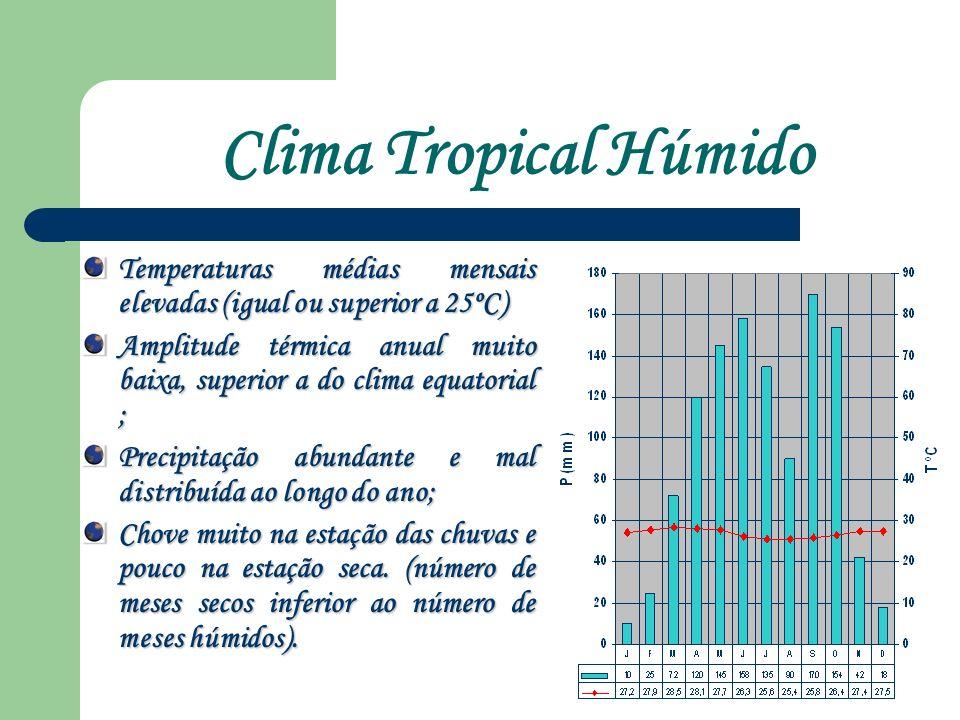 Clima Tropical Húmido Temperaturas médias mensais elevadas (igual ou superior a 25ºC)
