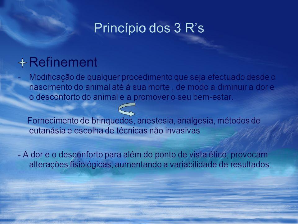 Princípio dos 3 R's Refinement