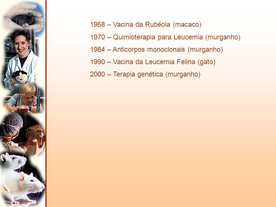 1968 – Vacina da Rubéola (macaco)