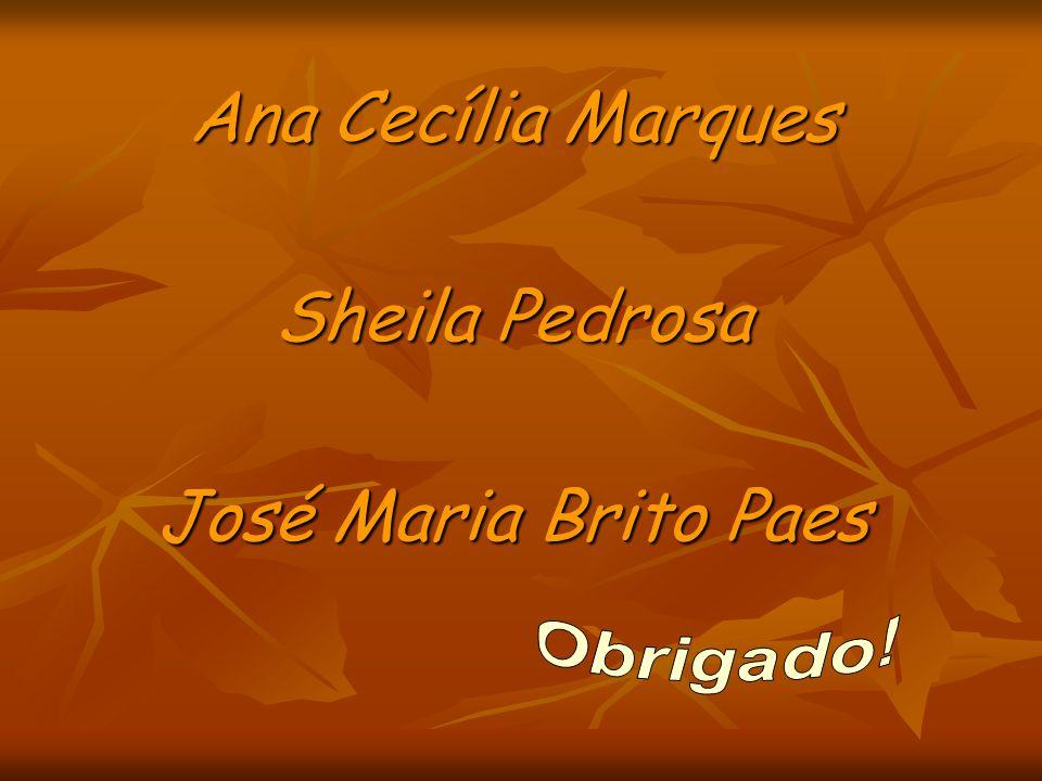 Ana Cecília Marques Sheila Pedrosa José Maria Brito Paes Obrigado!