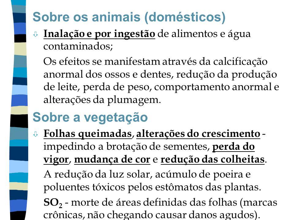 Sobre os animais (domésticos)