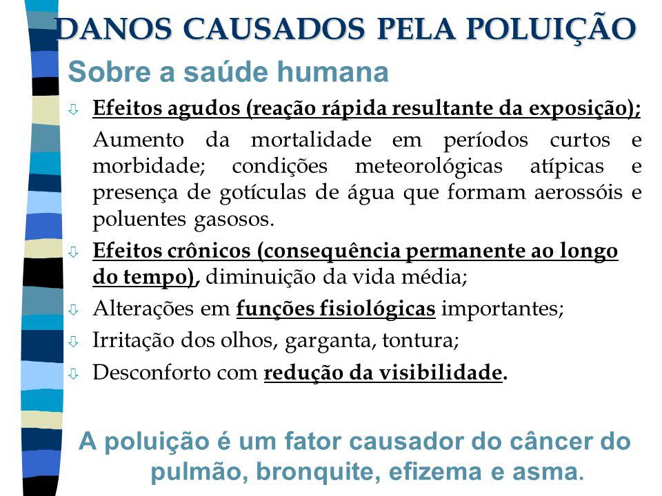 DANOS CAUSADOS PELA POLUIÇÃO