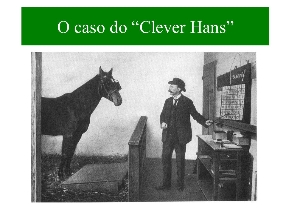 O caso do Clever Hans