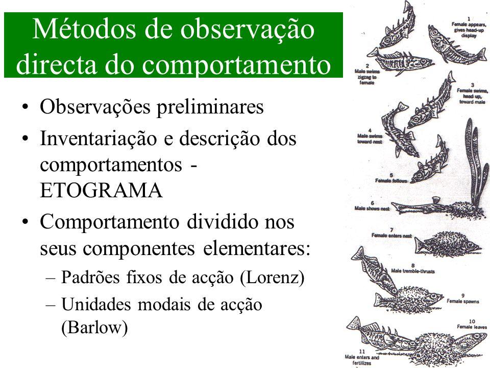 Métodos de observação directa do comportamento