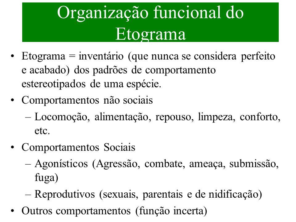 Organização funcional do Etograma