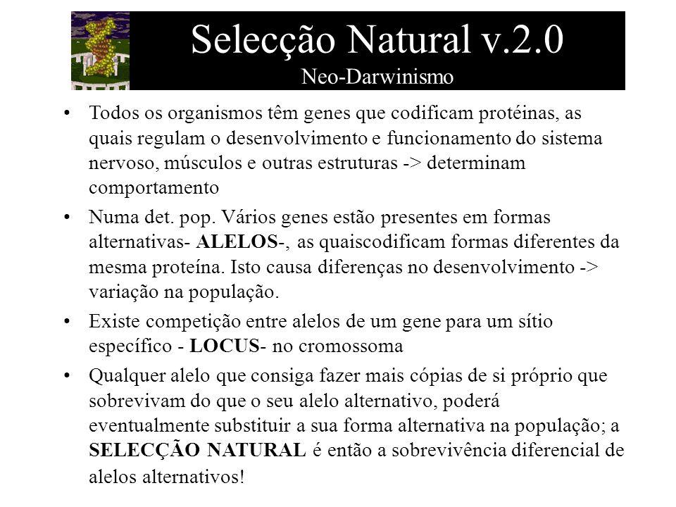 Selecção Natural v.2.0 Neo-Darwinismo