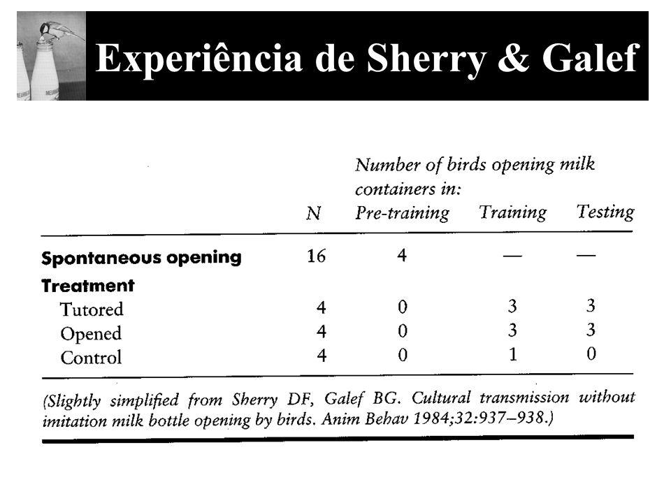 Experiência de Sherry & Galef