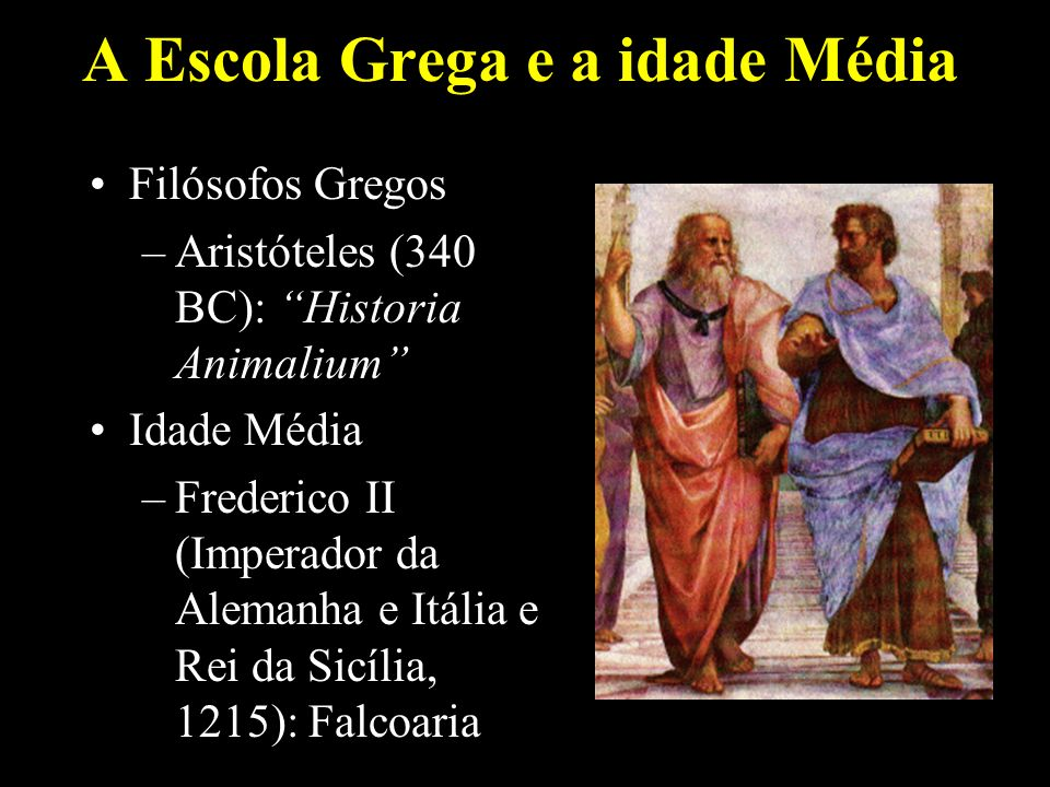 A Escola Grega e a idade Média