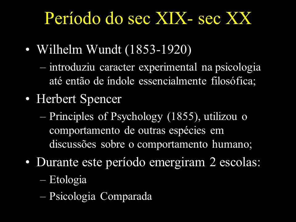 Período do sec XIX- sec XX