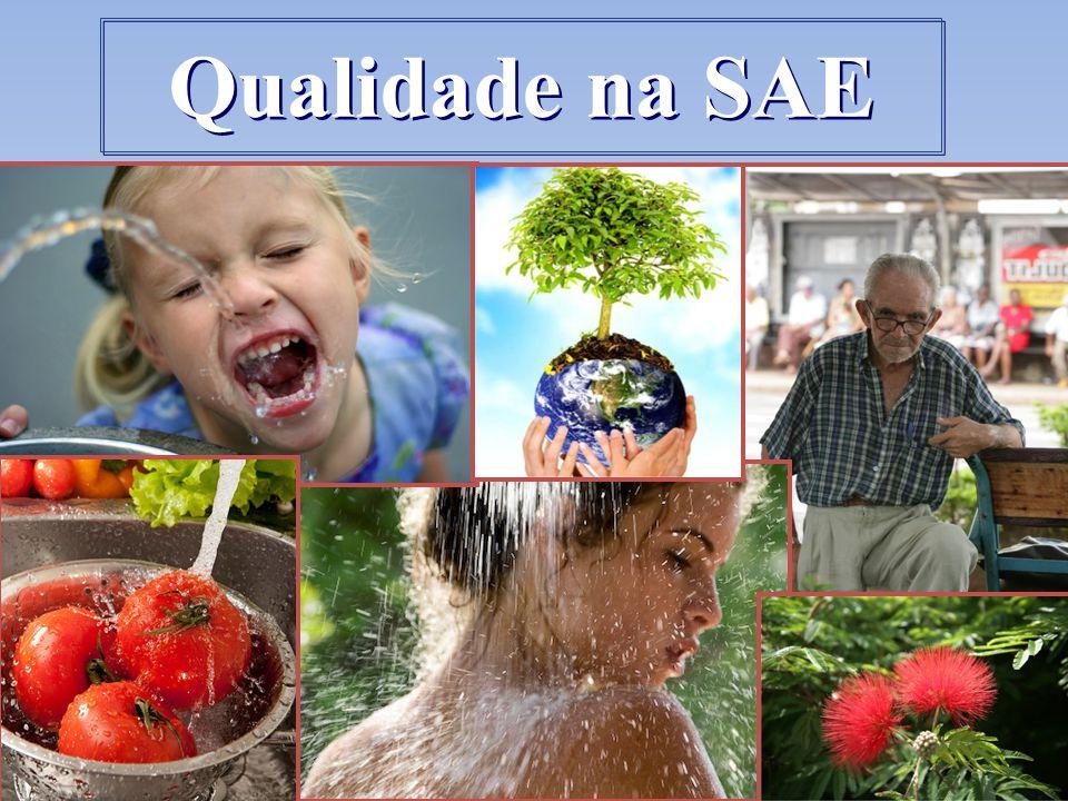 Qualidade na SAE 10