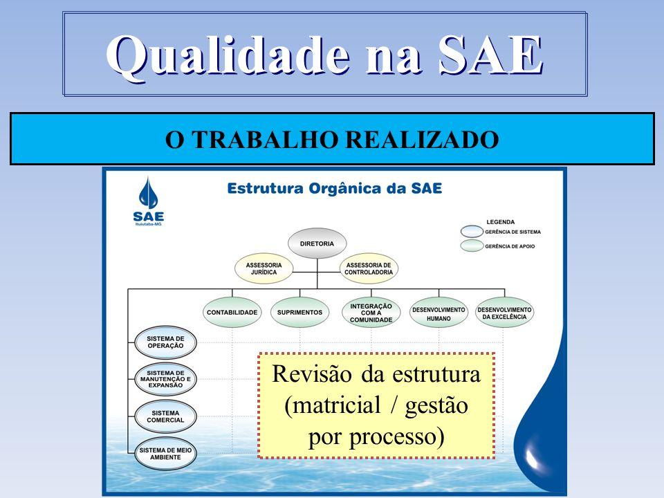 Revisão da estrutura (matricial / gestão por processo)