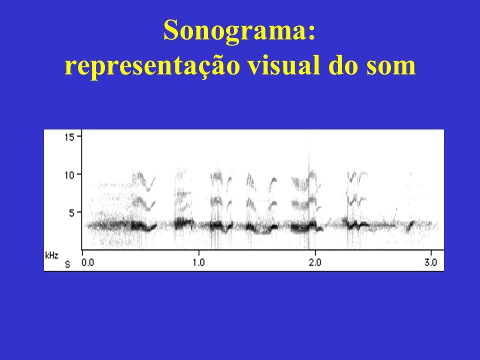 Sonograma: representação visual do som