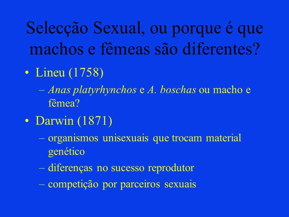 Selecção Sexual, ou porque é que machos e fêmeas são diferentes