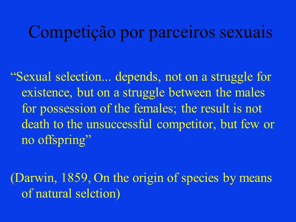 Competição por parceiros sexuais